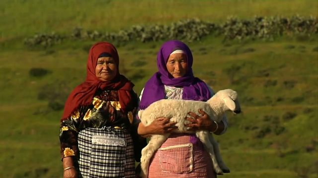 Morroco: The Two-Sheep Solution