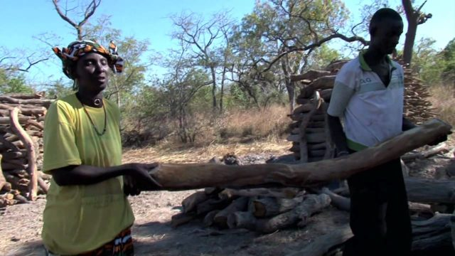 Senegal: A New Way of Cooking, A New Way of Life