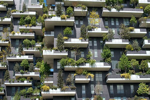 Photo of green city balconies. Credit/ Motion Array