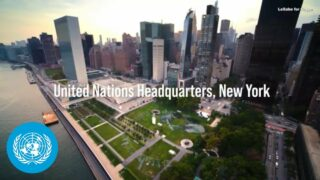 Giant eco-friendly artwork unveiled at United Nations