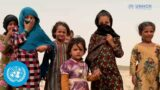 Millions of Afghans need urgent humanitarian assistance, UN humanitarian chief says
